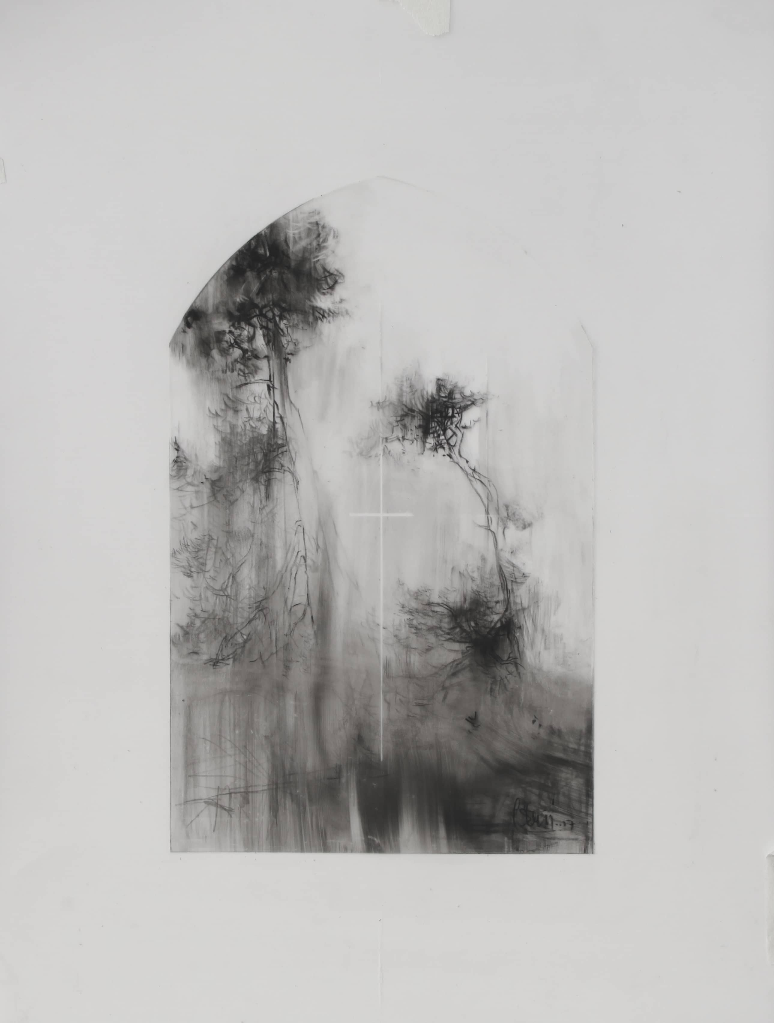 Laurie Steen - Cube Gallery - drawings using conte, oil medium on mylar
