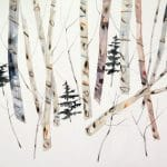 <b>Birch &amp; Pines</b>  |  watercolour, watercolour pastel &amp; oil  |  47 x 51cm      <br /> <a href=&quot;https://www.cube-gallery.co.uk/kate-evans-birch-and-pines/&quot;><font color=&quot;#bcbcbc&quot;>Click here for close up images</font></a>