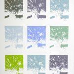 <b>Apres Atget Parc de Saint-Cloud Multiples. Quatre</b>  |  pastel on paper  |  97 x 121cm