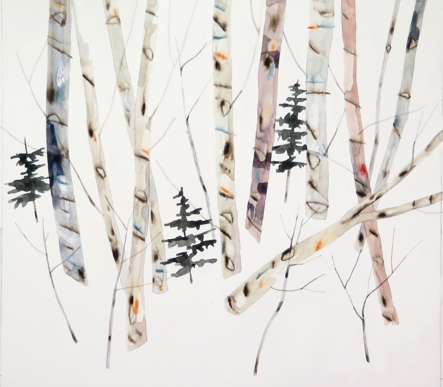 Kate Evans Birch & Pines, 47x51cm copy