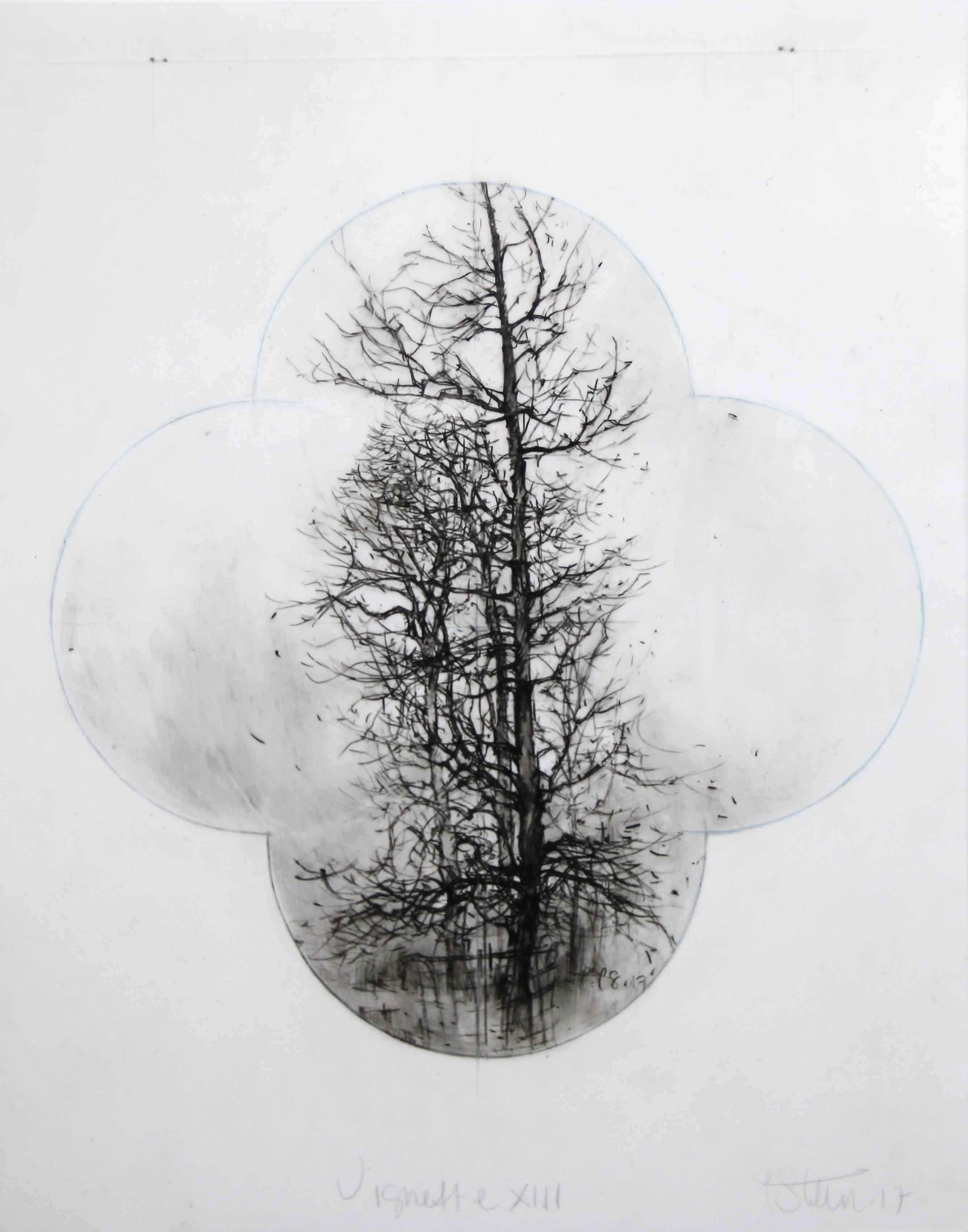 Laurie Steen Vignette XIII, 28x34.5cm copy